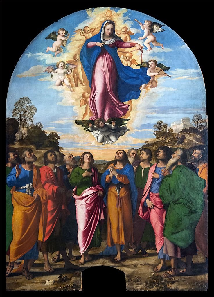Accademia_-_Assumption_of_the_Virgin_by_Palma_il_Vecchio.jpg
